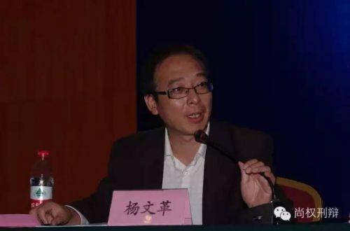 南开大学法学院教授杨文革